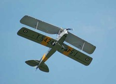 "Tiger Moth (88"" wing span quarter scale)"